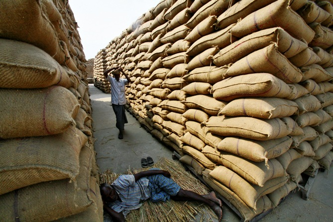 A labourer rests next to stacked sacks of paddy crop at a wholesale grain market in Chandigarh.