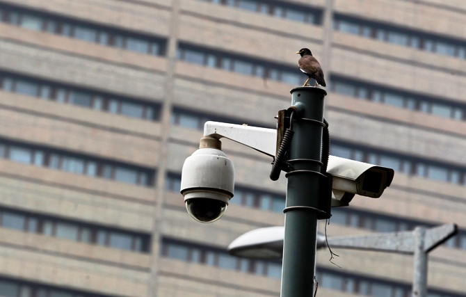 A bird sits atop a closed-circuit television camera pole at a traffic intersection in New Delhi.