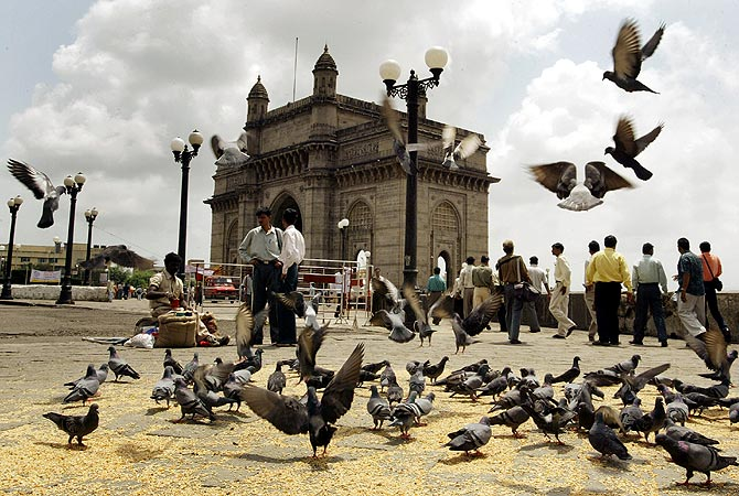 Pigeons hover around the Gateway of India monument in Bombay.