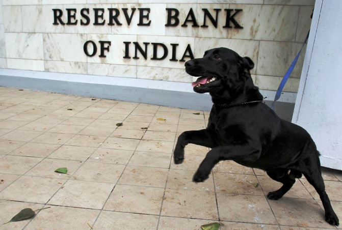A sniffer dog from the Indian police is tied outside the Reserve Bank of India (RBI) head office in Mumbai April 17, 2012.