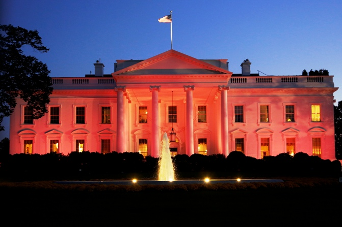 The White House is seen lit pink to observe Breast Cancer Awareness Month in Washington October 24, 2013.