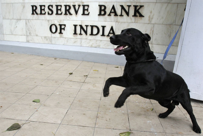 A sniffer dog from the Indian police is tied outside the Reserve Bank of India.