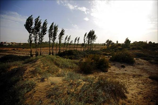 Desert is seen near a farming field on the outskirts of Minqin, Gansu province.