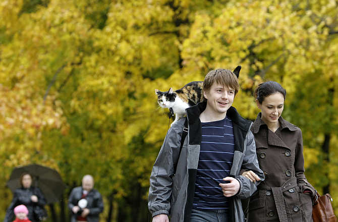 A couple walk with a cat in Kolomenskoye Park in Moscow, Russia.