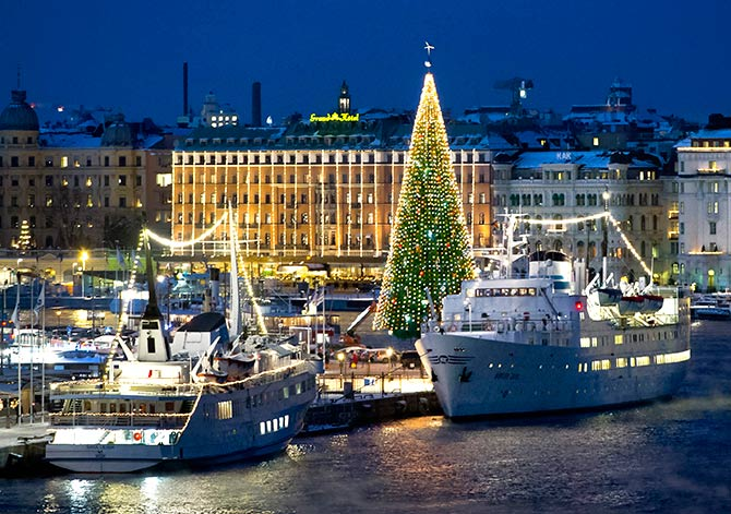 A 36-metre tall Christmas tree is lit up in central Stockholm.
