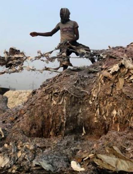 A labourer stands on a heap of scrap leather to be burnt in an oven for making fertiliser at a factory in Kolkata.