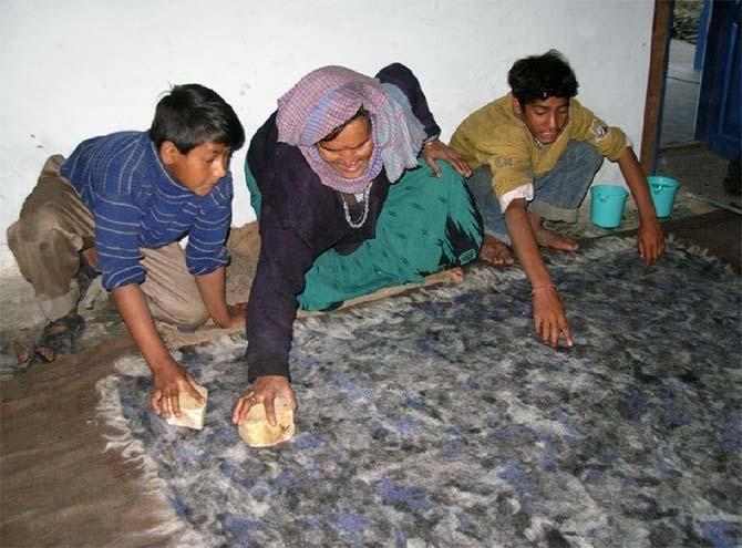 Villagers make woollen felt from wool.