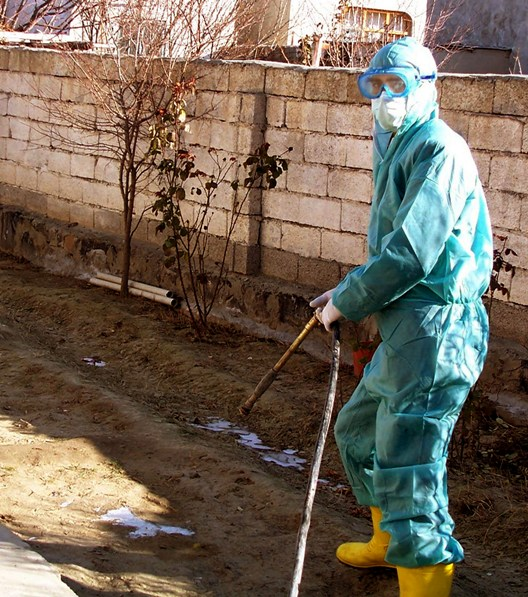A veterinary worker disinfects the gardens of the local people in Igdir, a Turkish town near Turkey's far eastern border with Armenia
