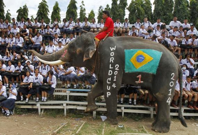 An elephant walks near Thai students at a school in Thailand's Ayutthaya province.
