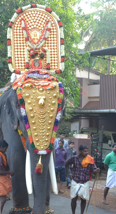 An elephant carried the idol of the deity during a temple festival in Thrissur.
