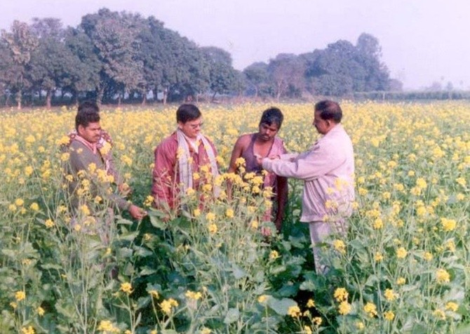 A field in Ballia