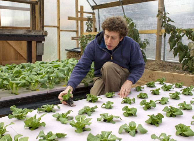 Chester County Food Bank agricultural director Bill Shick examines young lettuce plants growing in a hydroponic bed in a greenhouse,