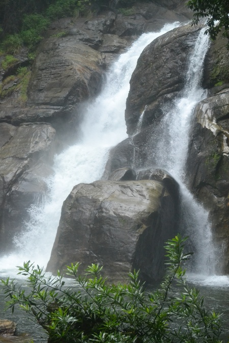 Monsoon may hit Kerala coast around June 5: IMD