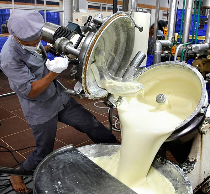 A worker unloads processed cheese from a pressure cooker during a media tour to Amul satellite dairy in Khatraj village, located in the western Indian state of Gujarat June 29, 2011. Amul, one of the popular Indian dairy brands, is owned and marketed by Gujarat Cooperative Milk Marketing Federation. Photo: Amit Dave/Reuters