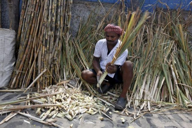 Why sugar prices are likely to rise from January - Rediff