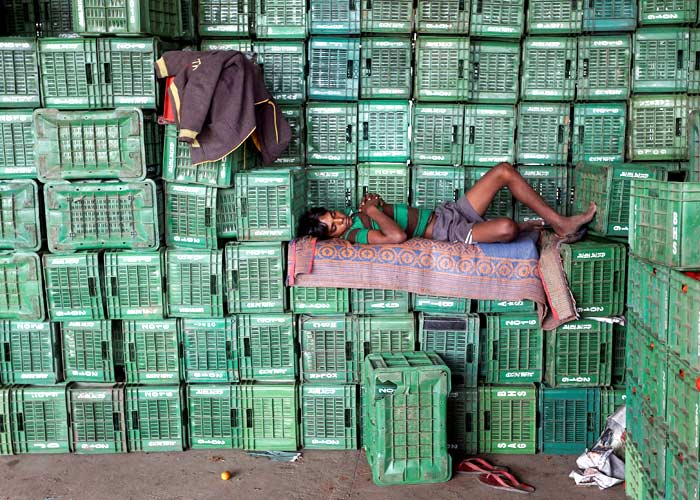 A labourer sleeps on baskets of unsold tomatoes at a wholesale market in Manchar village in the western state of Maharashtra, India, November 16, 2016. Photo: Shailesh Andrade/Reuters