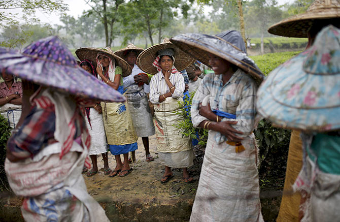 Tea garden workers wearing jappi hats made out of bamboo and palm leaves wait for the rain to stop to resume their work inside Aideobarie Tea Estate in Jorhat in Assam. Photograph: Ahmad Masood/Reuters.