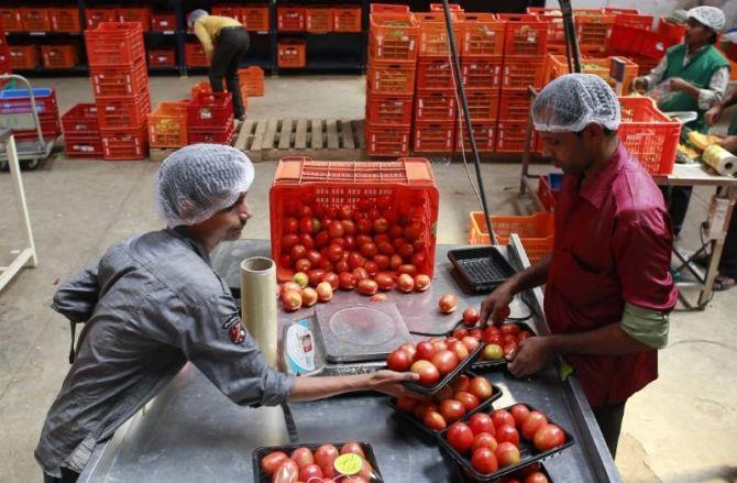 Why BigBasket focuses on fruits, vegetables - Rediff com