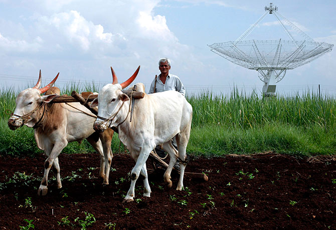 A farmer uses his oxen to till his land in front of a satellite dish set up in an adjacent field in Narayangaon September 28, 2012. Photograph: Vivek Prakash/Reuters