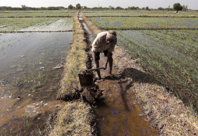 Why Telangana gave cheques to farmers instead of direct transfer