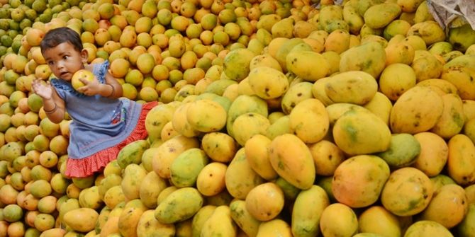 China, Iran will now get a taste of UP's famous Dussehri mangoes