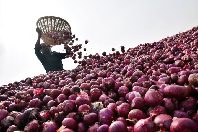 Onion prices fall 40 pc in a week at Lasalgaon mandi