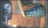 A still from Anacondas