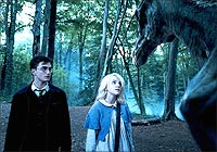 A still from Harry Potter And the Order of the Phoenix