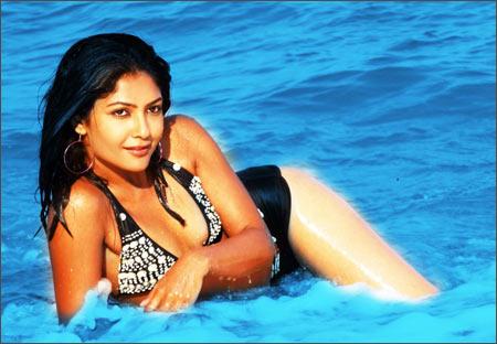 All my releases have hit the bull's eye :  Kamalinee Mukherjee,