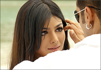Ayesha Takia and Salman Khan in Wanted