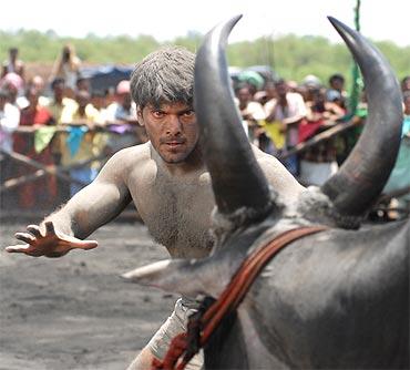 A scene from Varudu