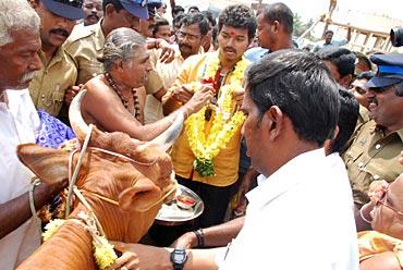 Vijay donates cows