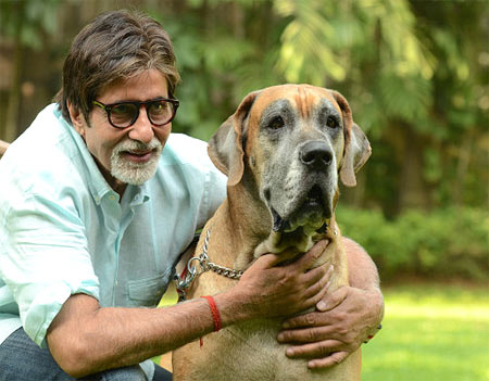 Amitabh Bachchan with his pet dog Shanouk