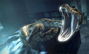 Nagini was one of Voldemort's Horcruxes