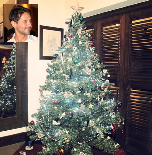 Dino Morea's Christmas tree