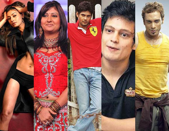 VOTE! Who Will Win <i>Bigg Boss 5</i>?