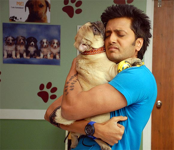 Riteish Deshmukh on Kyaa Super Kool Hain Hum
