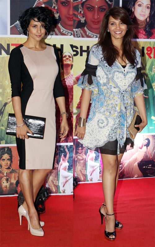 Gul Panag and Diana Hayden