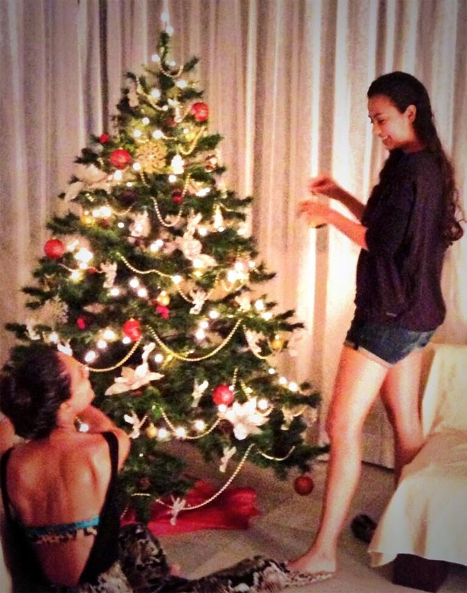 Lisa Haydon puts up her Christmas tree