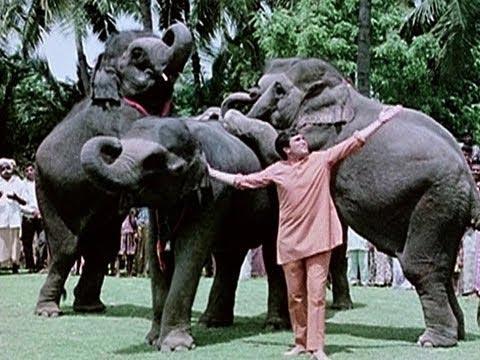 Rajesh Khanna in Haathi Mere Saathi