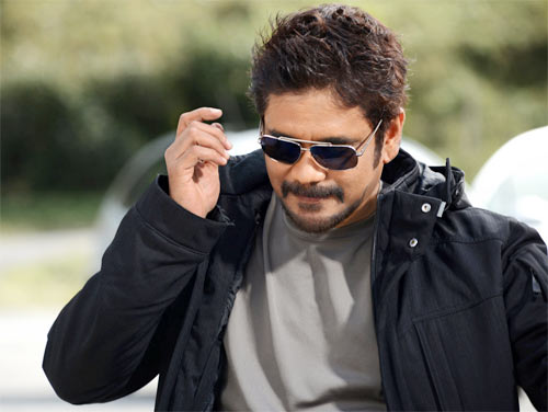 Nagarjuna in Greeku Veerudu