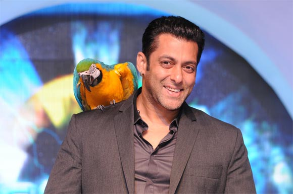 Salman Khan in Bigg Boss Season 6