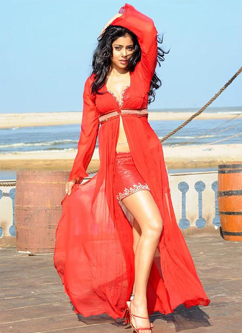 Shriya Saran in Telugu film Pista