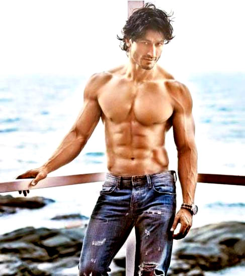 Vidyut Jamwal in Commando