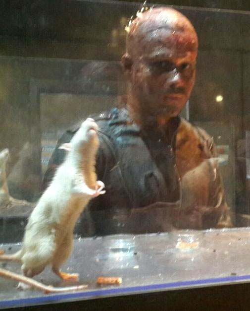Emraan Hashmi in Mr. X