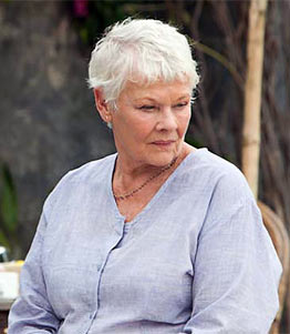 Judi Dench in a scene from The Best Exotic Marigold Hotel