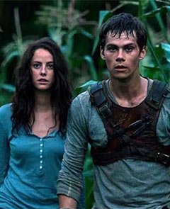 Current Bollywood News & Movies - Indian Movie Reviews, Hindi Music & Gossip - Review: The Maze Runner is a taut, edge-of-the-seat action flick
