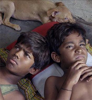 Review: Kaaka Muttai Is Brilliant