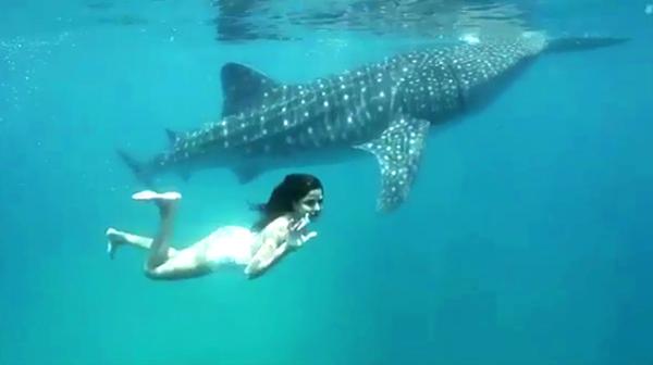 Katrina celebrates World Oceans Day - Rediff.com Movies