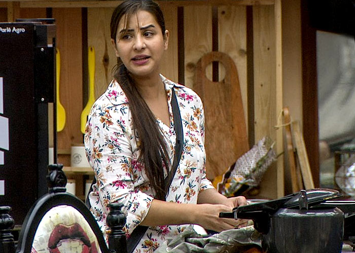 Current Bollywood News & Movies - Indian Movie Reviews, Hindi Music & Gossip - 'Bigg Boss 11 is only about Shilpa and Vikas'
